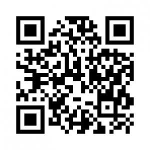 qr img 300x300 - Ejemplos de investigaciones cualitativas